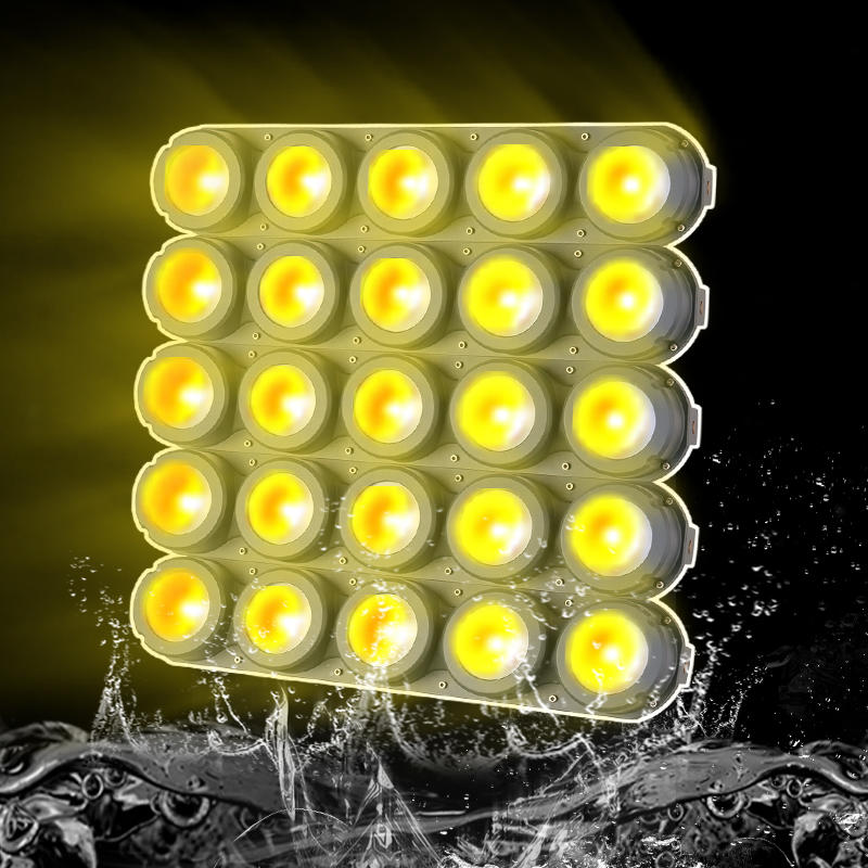 Marslite 5X5 Waterproof LED COB Matrix Blinder Light MS-WPM250-FC